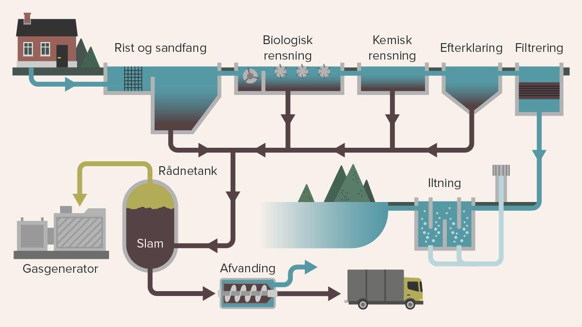 Spildevandet skal igennem mange led i renseanlægget, før det kan blive ledt ud i naturen.