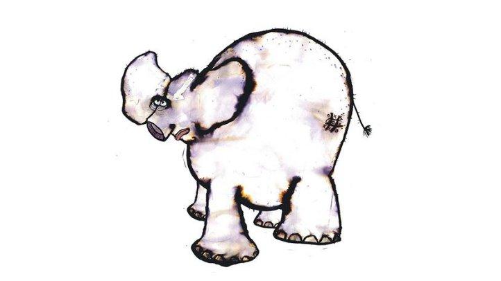 I historien møder I en elefant, der mangler sin snabel.