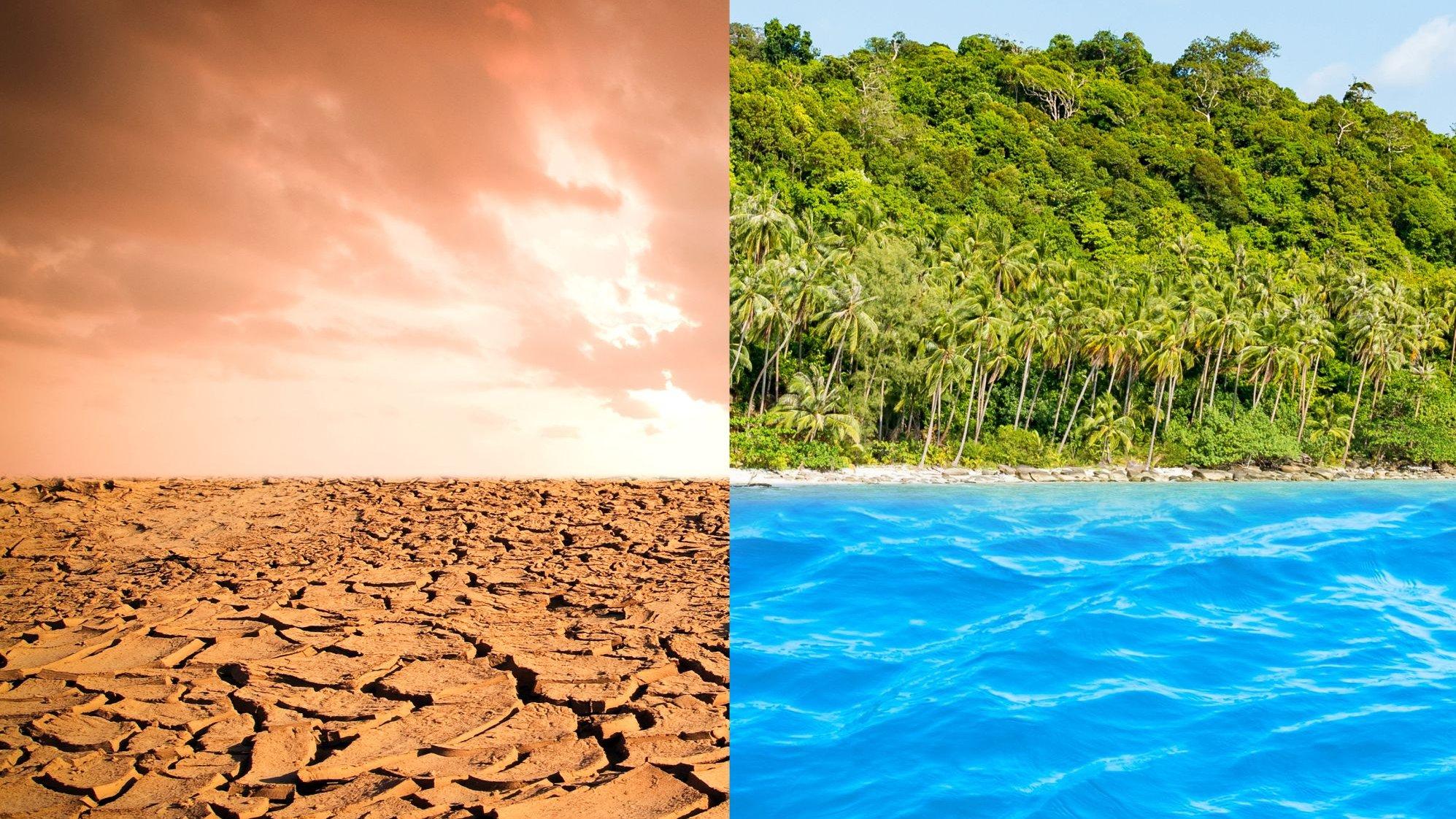 Hvad ved du egentlig om Jordens klimazoner og plantebælter?