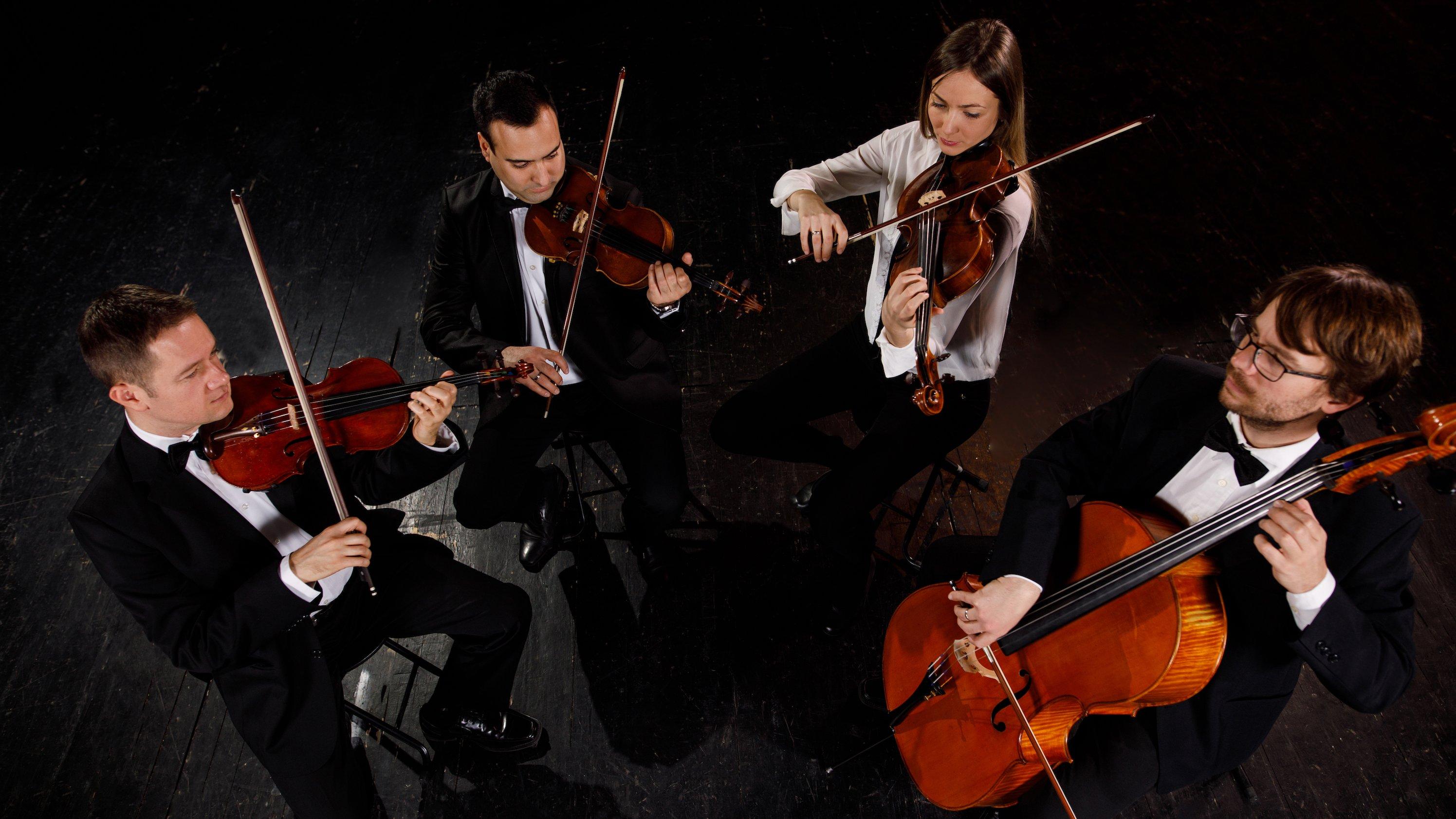 En strygerkvartet består af to violiner, en bratsch og en cello. Foruden dem er kontrabas også med i strygerfamilien.