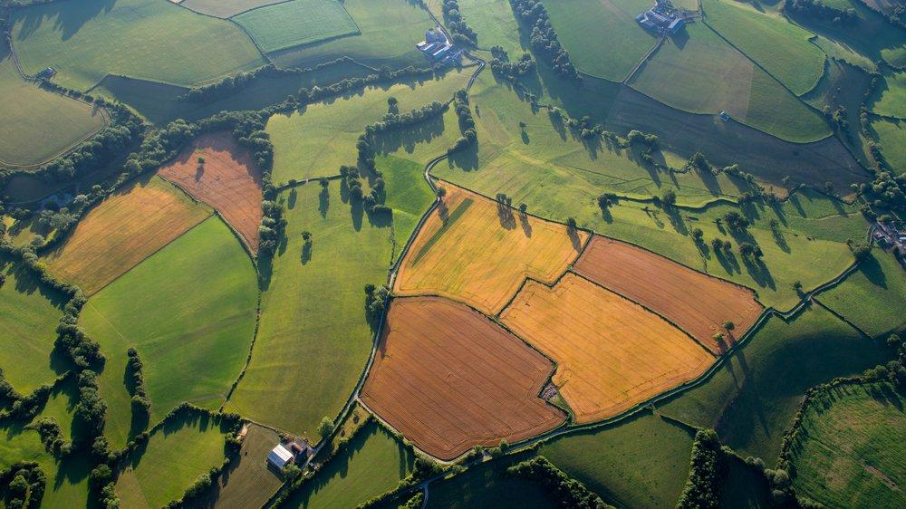 Engang lå der urskov og anden uberørt natur her. Nu er der marker, der fx giver korn, majs og raps.
