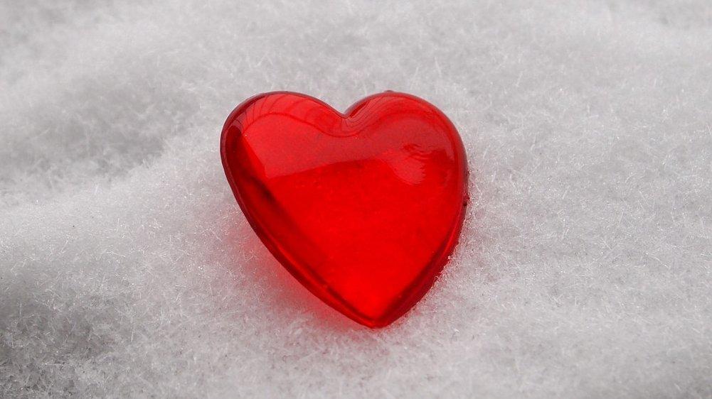 Hjertet er et livsvigtigt organ. Hjertet er også et symbol på kærlighed.