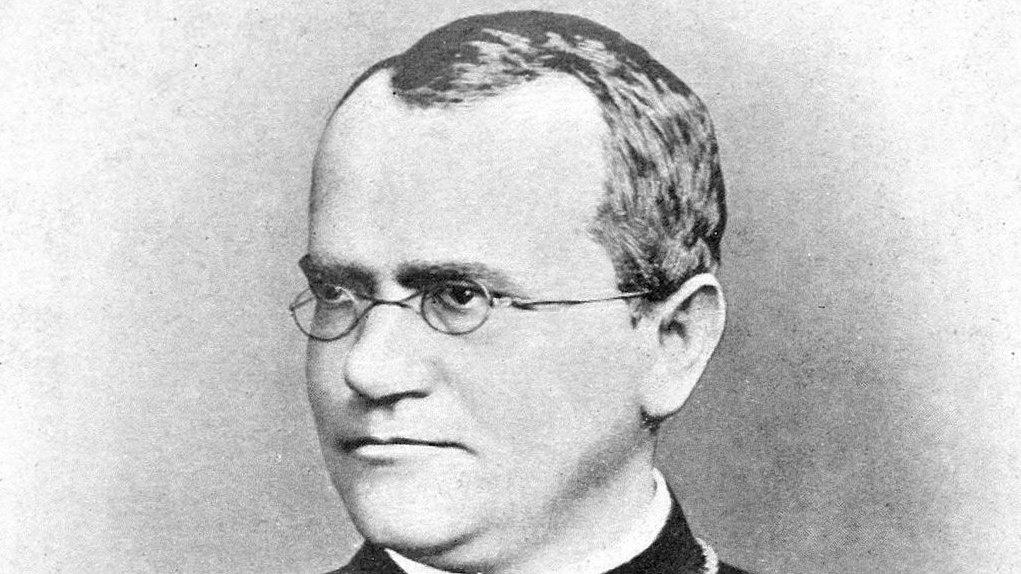 Gregor Mendel.