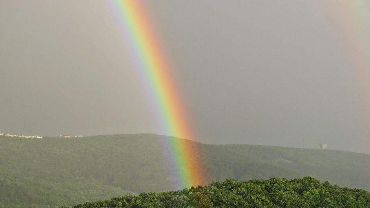 Dette forløb handler om myter om de første mennesker, æbler, træer og regnbuen.