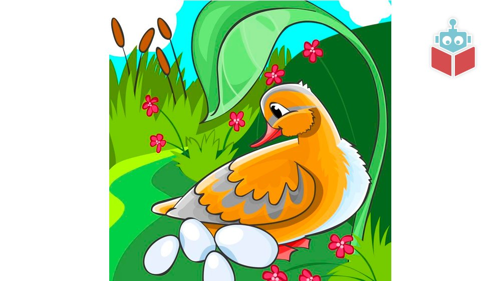 Andemor ruger og ruger på sine æg, men der sker ingenting. ©