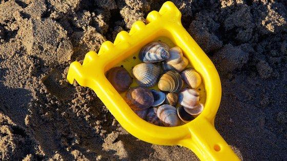 Tag med til stranden, og find fine skaller og flotte sten.