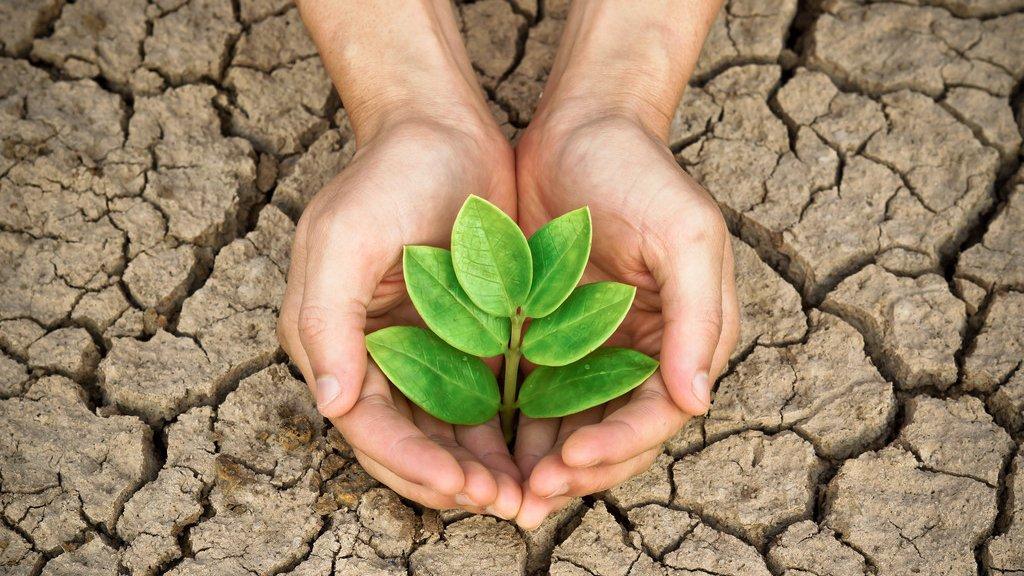 Drivhuseffekten gør Jorden til et varmere sted at leve for dyr og planter.