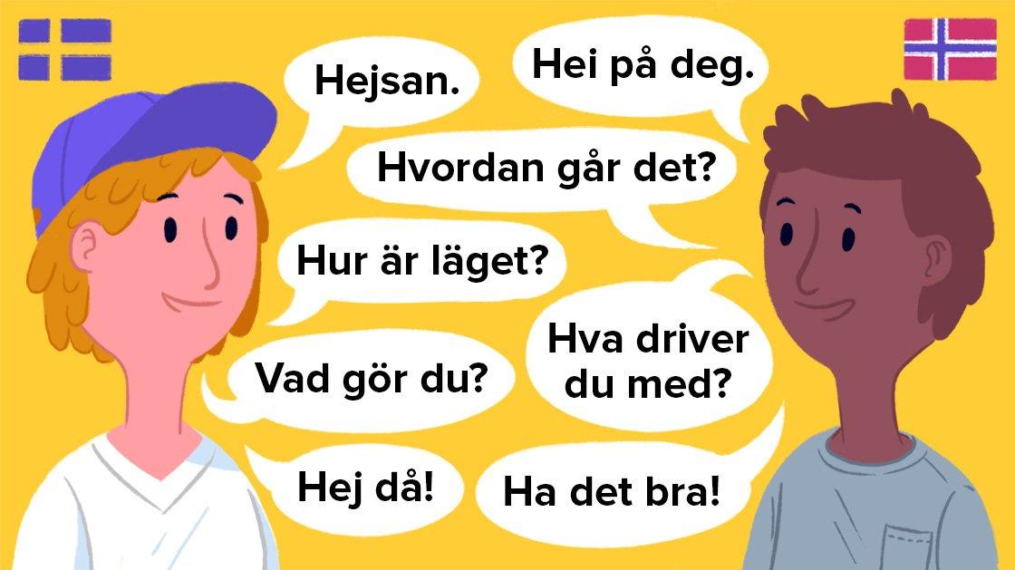 Svensk og norsk er vores nabosprog og ligner meget dansk.